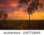 cobbold gorge outback sunset | Shutterstock . vector #1047718969