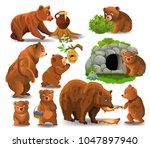 bears doing different... | Shutterstock .eps vector #1047897940