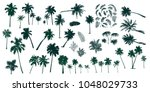 set constructor from realistic... | Shutterstock .eps vector #1048029733