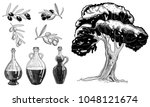 olive hand drawn elements for... | Shutterstock .eps vector #1048121674