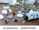 smudge stick with crystals and... | Shutterstock . vector #1048155460
