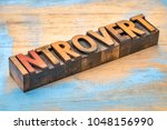 introvert  personality type   ... | Shutterstock . vector #1048156990