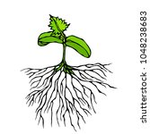 vector illustration of sprout...   Shutterstock .eps vector #1048238683