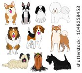 group of small dogs hand drawn | Shutterstock .eps vector #1048258453
