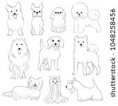 group of small dogs hand drawn   Shutterstock .eps vector #1048258456