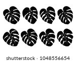 monstera deliciosa house plant... | Shutterstock .eps vector #1048556654