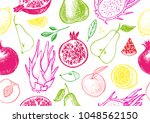 healthy fruit hand drawn... | Shutterstock .eps vector #1048562150