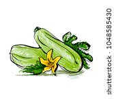 Zucchini With Leaves And Flower.