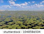 beautiful landscape in the... | Shutterstock . vector #1048586534