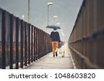 Stock photo gloomy weather in the city man with his dog labrador retriever walking in rain on the bridge 1048603820