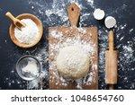baking ingredients. bowl  eggs  ... | Shutterstock . vector #1048654760