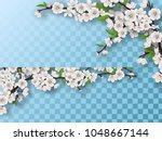 set of spring blooming fruit... | Shutterstock .eps vector #1048667144