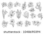 set of beautiful monochrome... | Shutterstock .eps vector #1048690394