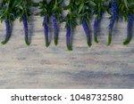 beautiful flowers  on wood... | Shutterstock . vector #1048732580