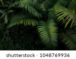 top view of palm tree and... | Shutterstock . vector #1048769936