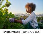 african american woman tending... | Shutterstock . vector #1048777166