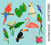 tropical birds vector flamingo... | Shutterstock .eps vector #1048792880