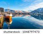 beautiful winter landscape of... | Shutterstock . vector #1048797473