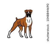 Boxer Dog   Isolated Outlined...