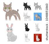 toy animals cartoon black flat... | Shutterstock .eps vector #1048851860