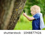 charming kid exploring nature... | Shutterstock . vector #1048877426
