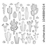 vector cactus  flowers and... | Shutterstock .eps vector #1048884314