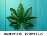 nature green leaf with shabby...   Shutterstock . vector #1048965920