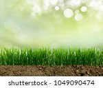 growing grass in the earth soil | Shutterstock . vector #1049090474