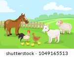 farm animals and birds on a... | Shutterstock .eps vector #1049165513
