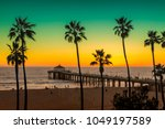 palm trees on manhattan beach... | Shutterstock . vector #1049197589