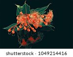 eucalyptus flowers  buds  and... | Shutterstock . vector #1049214416
