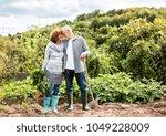 senior couple gardening in the... | Shutterstock . vector #1049228009