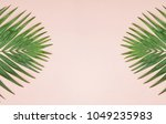 palm green leaf on pastel color ... | Shutterstock . vector #1049235983