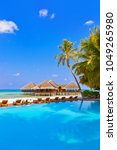 pool and cafe on maldives beach ... | Shutterstock . vector #1049265980