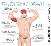 testosterone effects... | Shutterstock .eps vector #1049310374