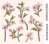 blooming tree. set collection....   Shutterstock .eps vector #1049312504