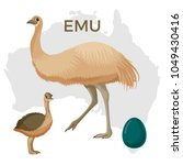 emu bird  small and large... | Shutterstock .eps vector #1049430416