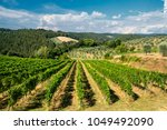 typical rural landscape in the...   Shutterstock . vector #1049492090