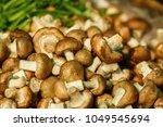 Small photo of Shiitake Mushroom Food and Drug Administration is useful.