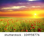 field with green grass and red... | Shutterstock . vector #104958776