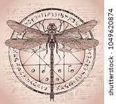 illustration of a dragonfly on... | Shutterstock .eps vector #1049620874