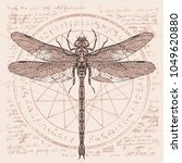 illustration of a dragonfly on...   Shutterstock .eps vector #1049620880