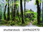 close up image of aquarium tank ... | Shutterstock . vector #1049632970