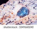 collectible specimen of blue... | Shutterstock . vector #1049660240