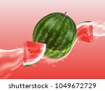 delicious juicy watermelon in...   Shutterstock .eps vector #1049672729