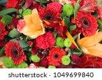 gerberas  chrysanthemums ... | Shutterstock . vector #1049699840