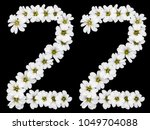 arabic numeral 22  twenty two ... | Shutterstock . vector #1049704088