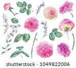 set of vintage watercolor roses ... | Shutterstock . vector #1049822006