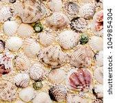 beautiful background of sea... | Shutterstock . vector #1049854304