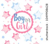 pink and blue gender reveal... | Shutterstock .eps vector #1049908628